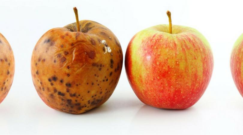 Fibromialgia: prima e dopo la cura